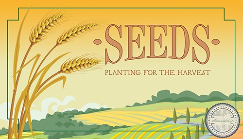 Seeds: Planting for the Harvest