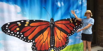 Monarch Butterfly Project